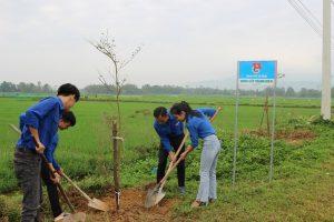 Thành Đoàn Đà Nẵng: Ra quân Tết trồng cây Xuân Canh Tý